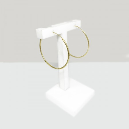 Earrings Diamonds Circle