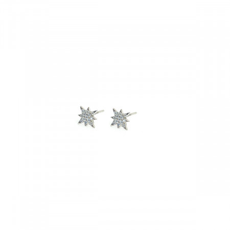Earrings Happiness
