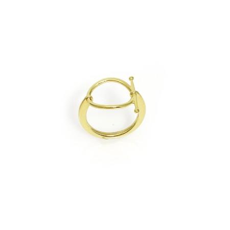 Ring Cosmic
